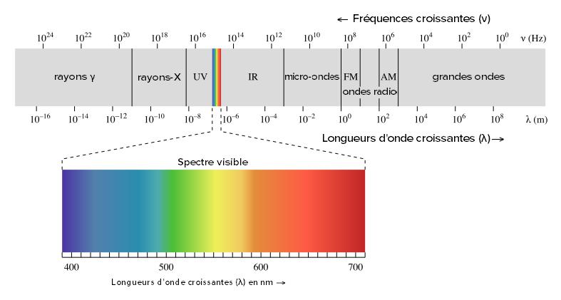 spectre de la lumière visible
